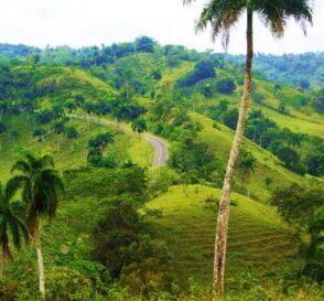 Jamao al Norte, naturaleza en la República Dominicana 1