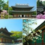 Los cinco grandes palacios de Seúl