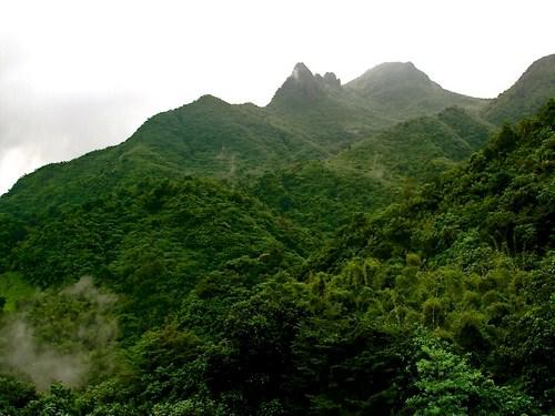 El Yunque, bosque nacional en Puerto Rico