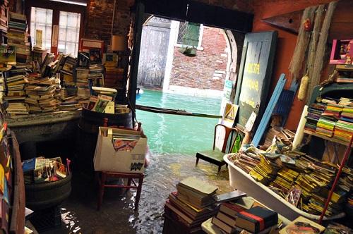 libreria-venecia