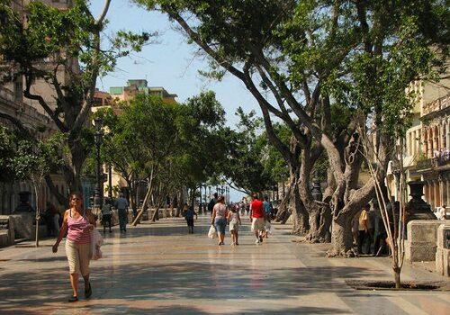 El Paseo del Prado en La Habana 3