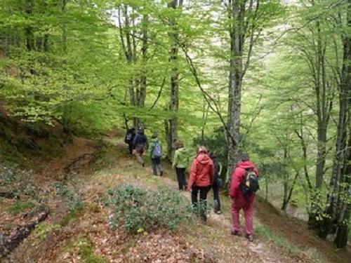 Ruta senderista por Cantabria saja