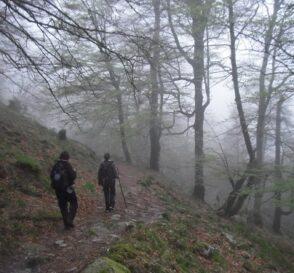 Sendero de Cureñas cantabria