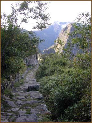 Trekking  hacia el Machu Picchu  1