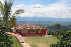 Triángulo colombiano, café gourmet 1
