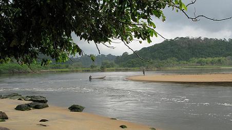 Parque Nacional de Taï, abrazando la naturaleza 19