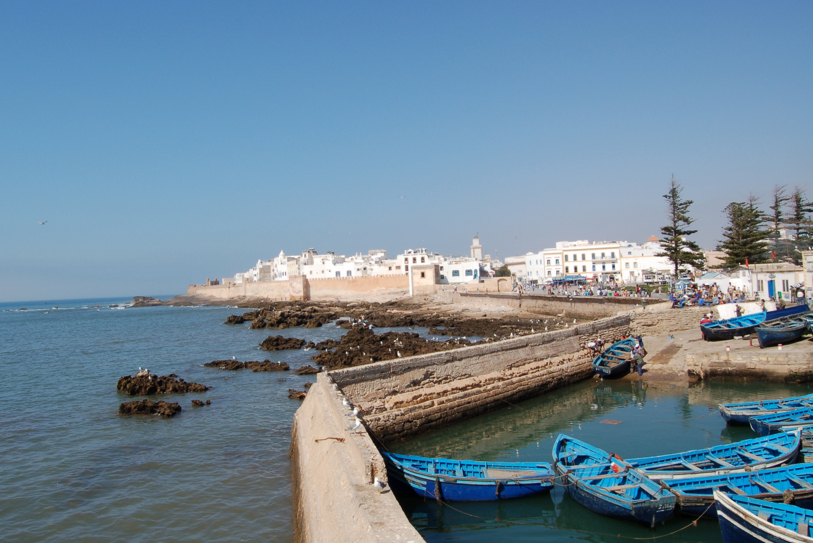 Essaouira, el encanto de la ciudad blanca y azul de Marruecos 6