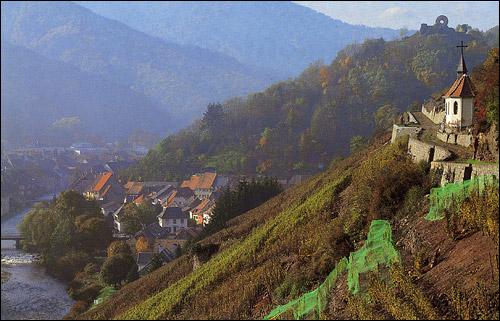 Las mejores regiones de vino en Francia 3