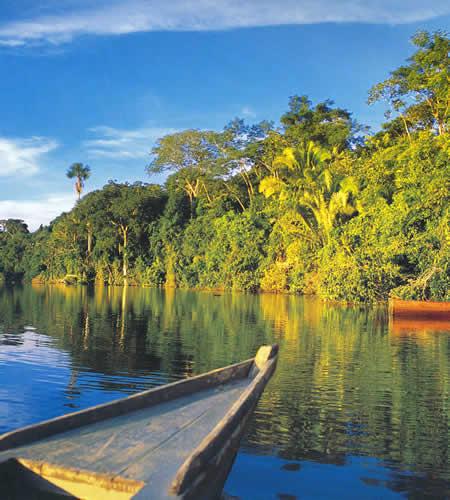 El Parque Nacional del Manu en Perú 2