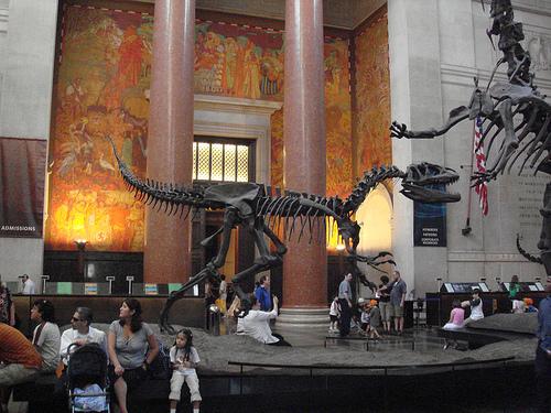 Museo Americano de Historia Natural
