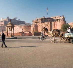 Bikaner, la ciudad de los camellos en la India 1