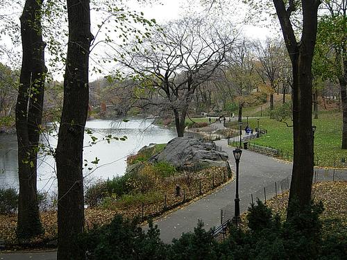 Paseo por Central Park en Nueva York 1