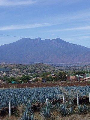 De museos y tequilas en Guadalajara 1