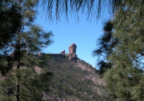El Roque Nublo en Gran Canaria 3