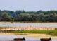 El Delta del Danubio, un paraíso de la naturaleza 2