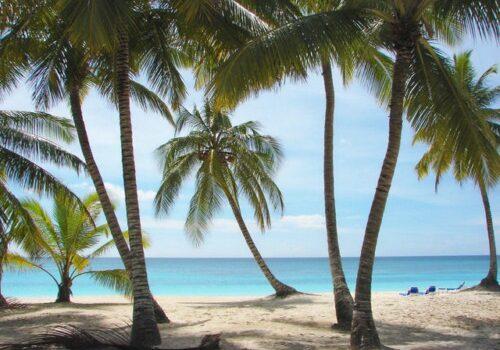 Playas y diversión en Punta Cana 8