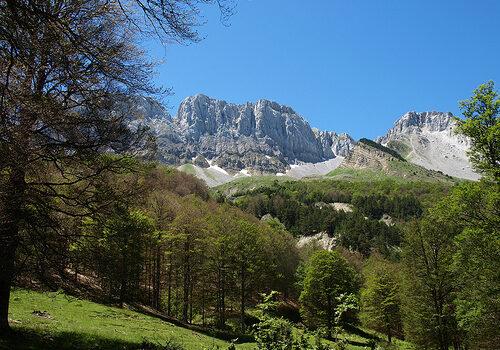 Excursión a los pirineos aragoneses 7