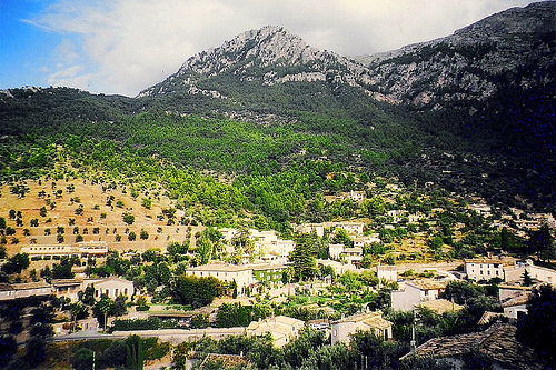 Naturaleza en la isla de Mallorca 10