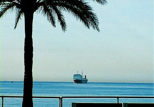 Mallorca, todo un mundo a nuestro alcance 8