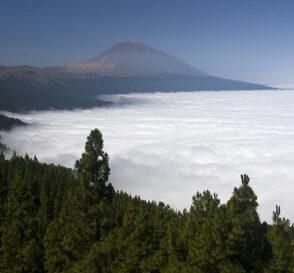 El Parque del Teide 1