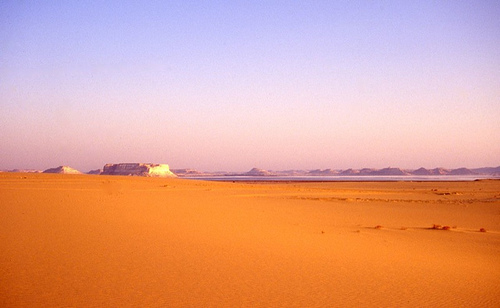 Turismo de naturaleza en Egipto 8