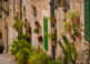 La Serra de Tramuntana en Mallorca 5