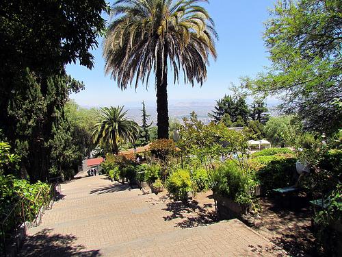 Zoológico de Santiago de Chile 1