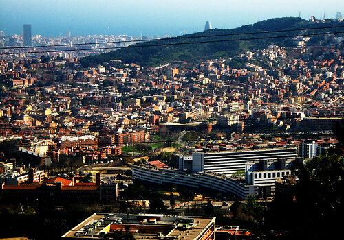 Caminando por Collserola, rincón verde de Barcelona 7