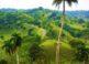Jamao al Norte, naturaleza en la República Dominicana 4