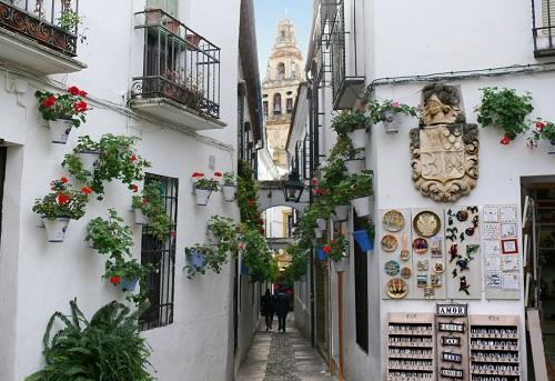 Calleja de las Flores, mítica imagen de Córdoba 2