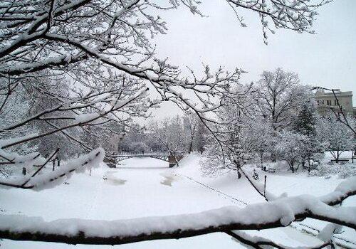 Sao Joaquim, frío y nieve en Brasil 4