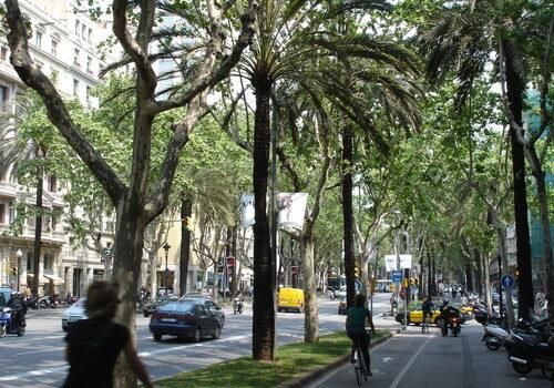 La Avenida Diagonal en Barcelona 3