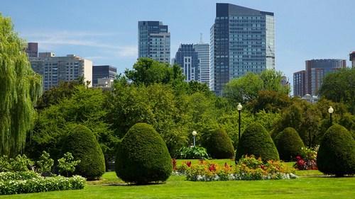 Qué ver en Boston 3